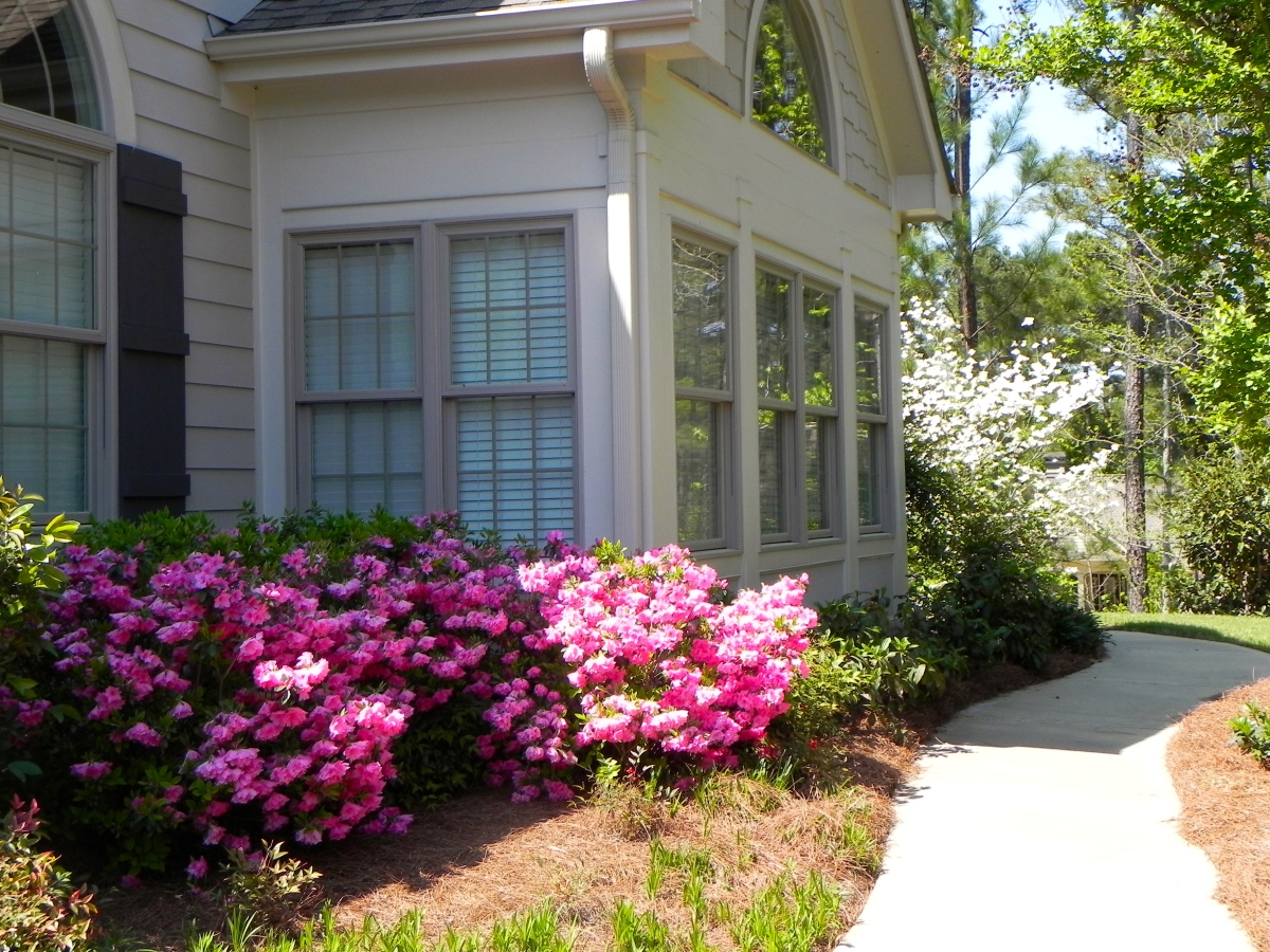 New Vacation Rentals Everyday at Reynolds Plantation on ...